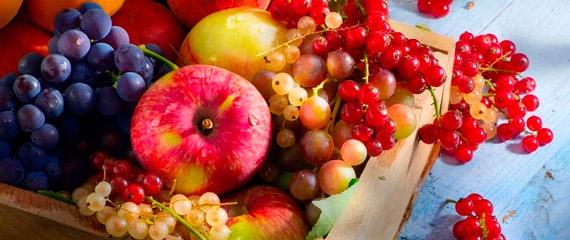 Frutas Y Verduras Mercalicante